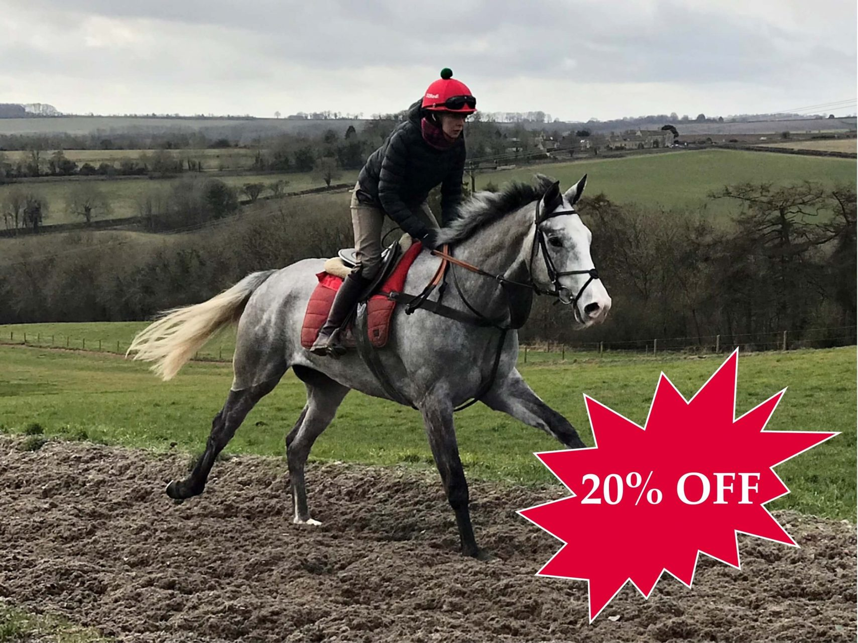 20% OFF BLACK SAM'S SILVER RACEHORSE SYNDICATE TRAINED BY FERGAL O'BRIEN