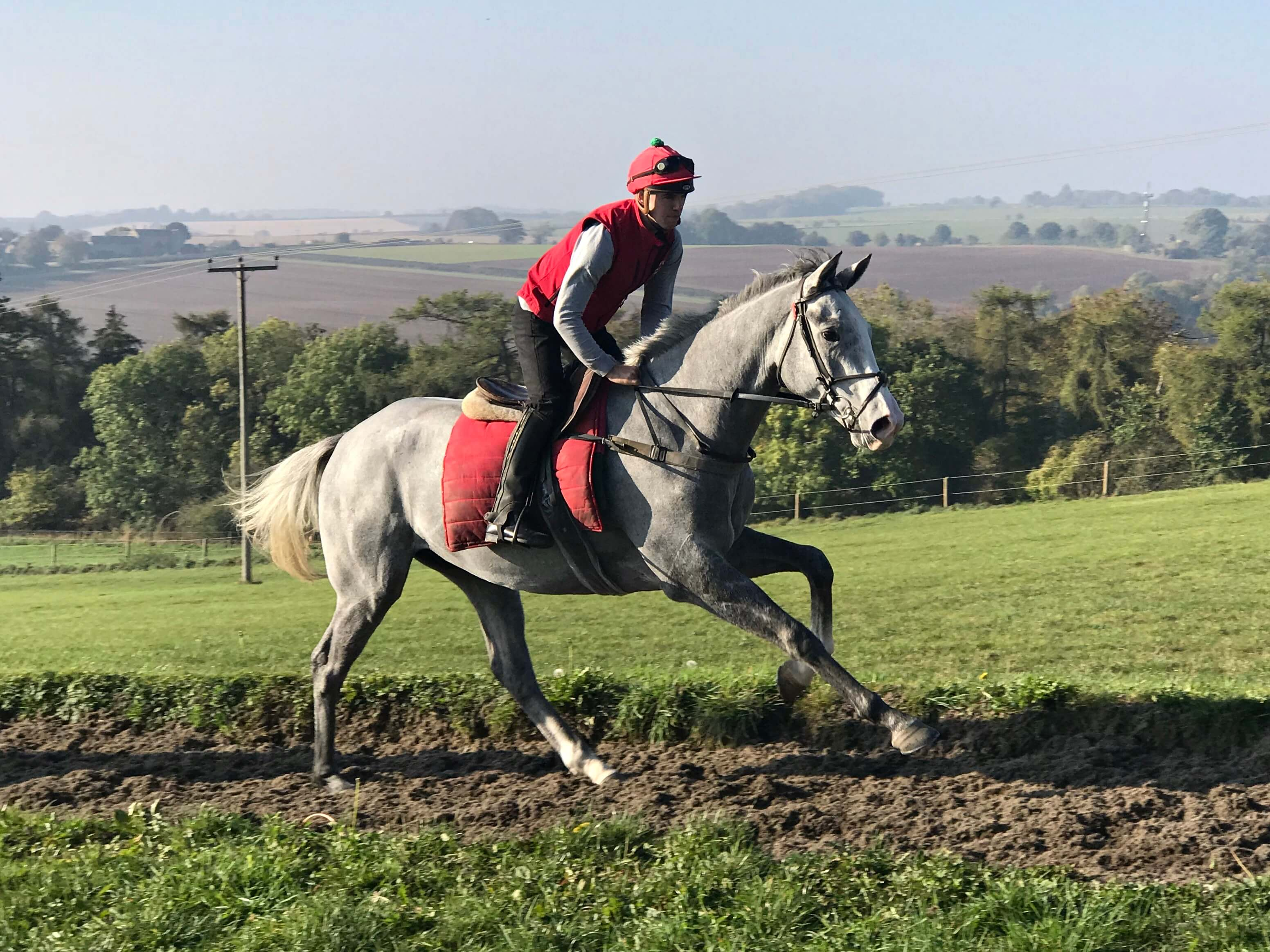 Black Sam Bellamy National Hunt Trained by Fergal O'Brien, Cheltenham - Biddestone Racehorse Syndicates, Newmarket, Lambourne, Cheltenham, Marlbrough | Biddestone Racing