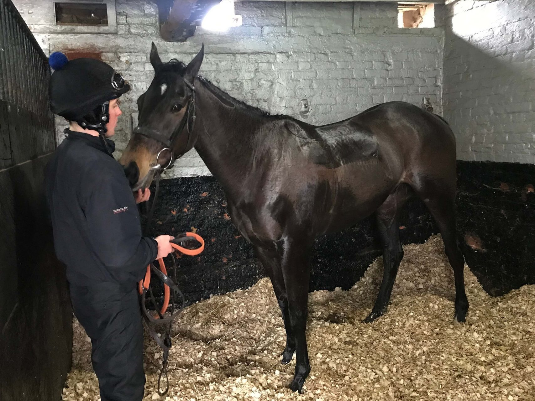 Arcadian Pearl in his box 6 March 2019