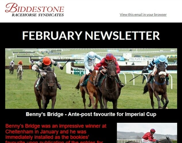 Biddestone Racehorse Syndicates February Newsletter (2)