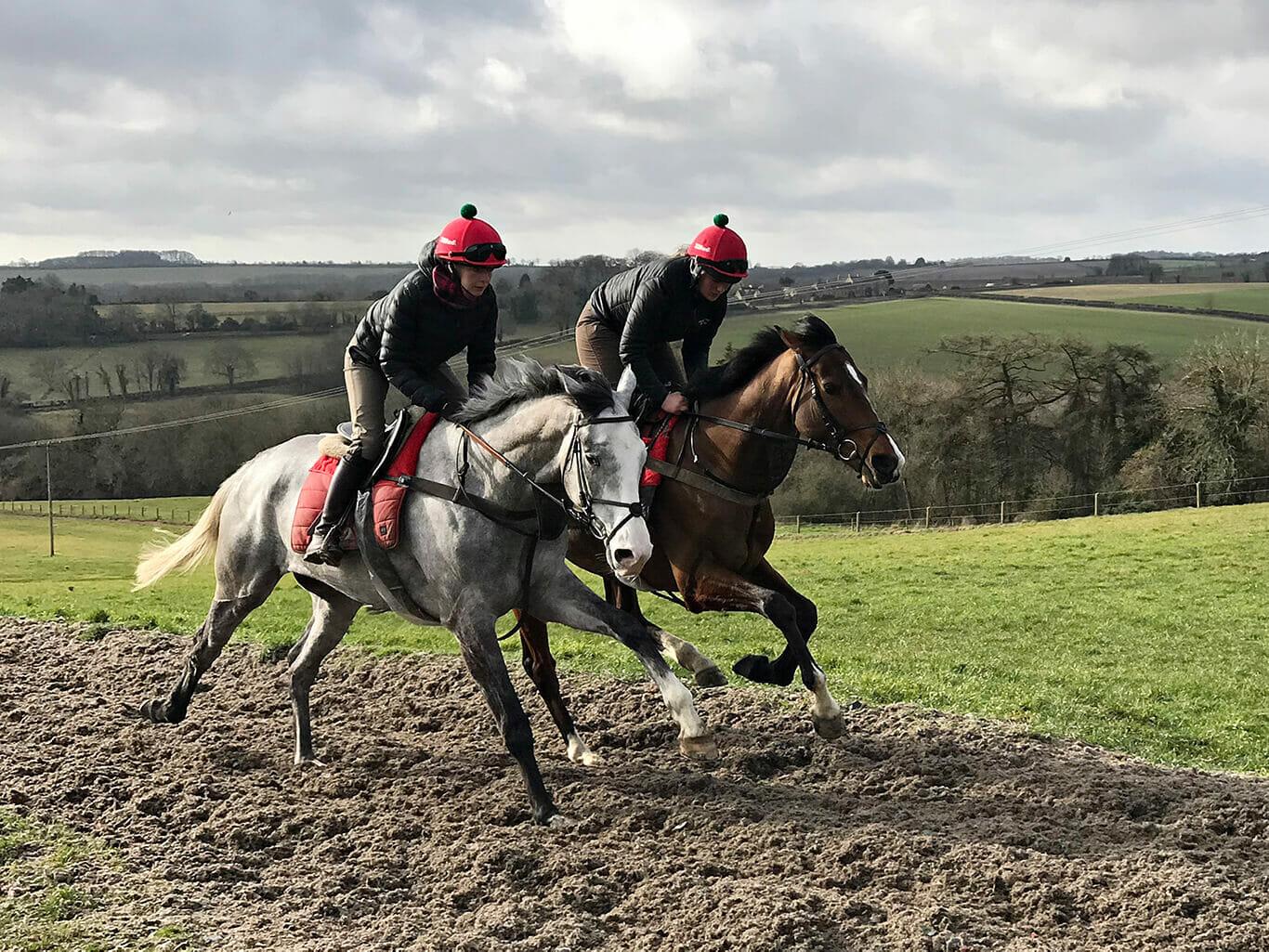 Black Sam's Silver working on the gallops at Fergal O'Brien's 20 February 2019(1)