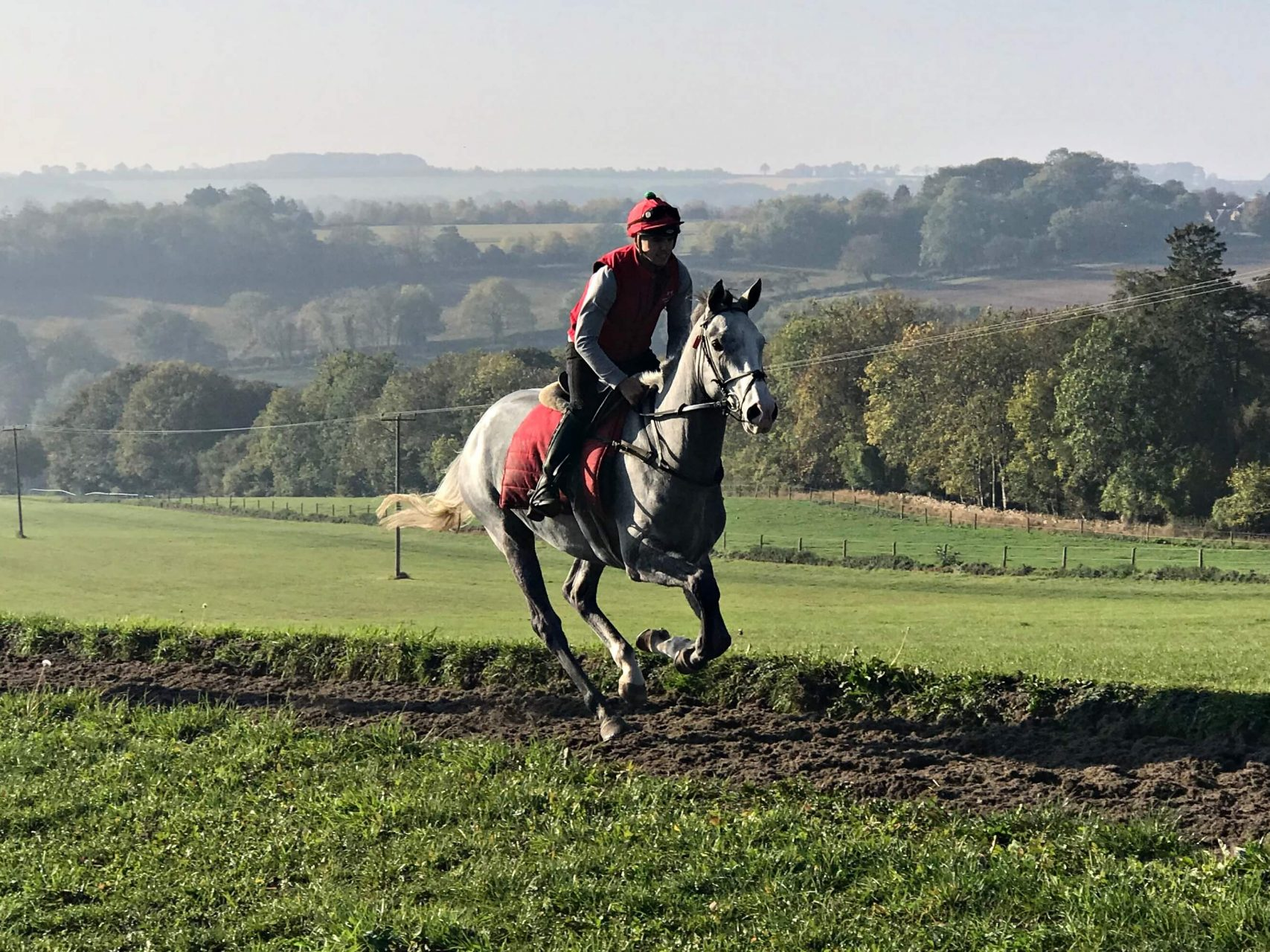 Black Sam Silver on the gallops with Fergal O'Brien at his Newmarket Stables | Biddestone Racing