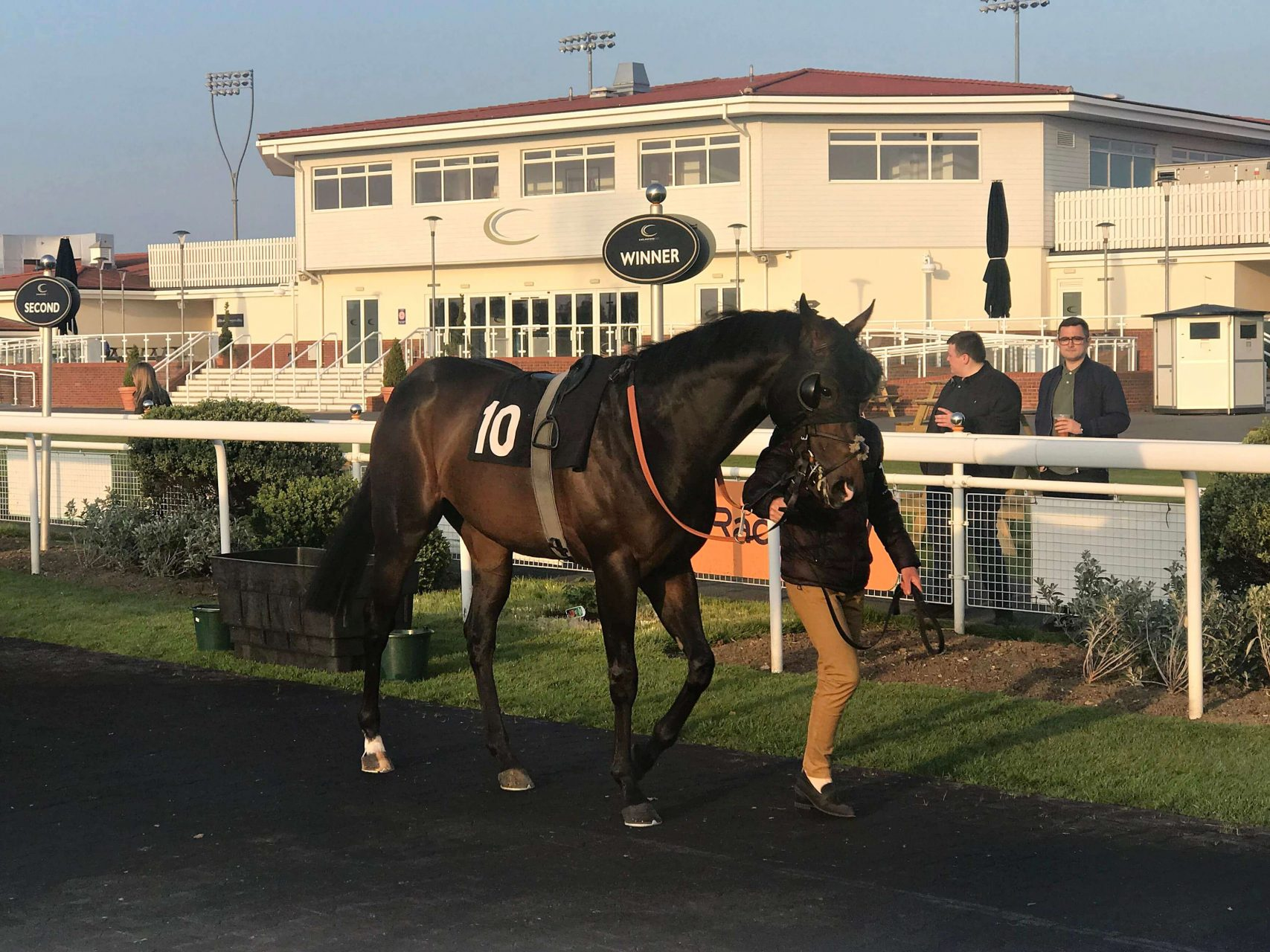 Jailbreak in parade ring at Chelmsford 30 April 2019