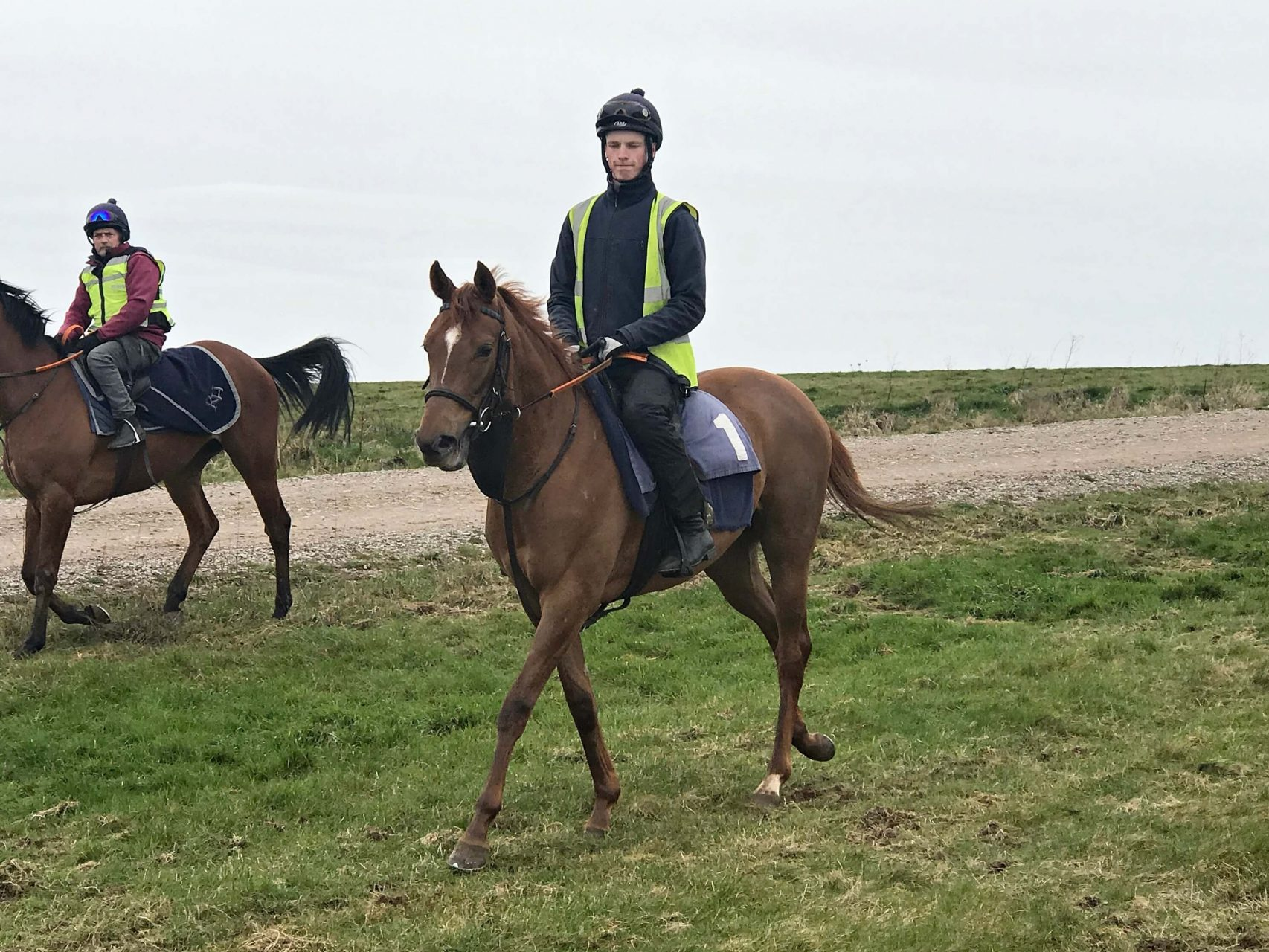 Lope De Vega filly trained by Richard Hannon 8 March 2019