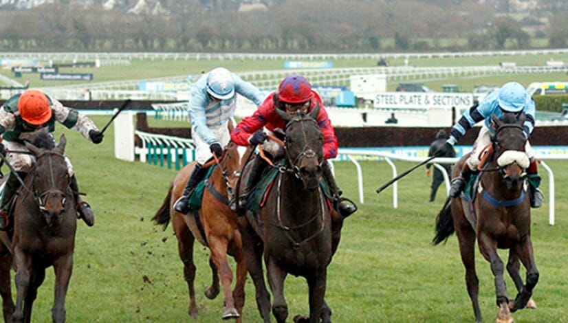 Benny's Bridge winning at Cheltenham Races, 1st place winner at Cheltenham